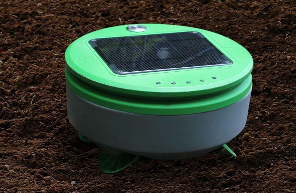 Este es Tertill, el robot jardinero especializado en remover malezas