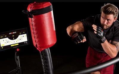 Botboxer: un robot diseñado para ayudar a entrenar artes marciales