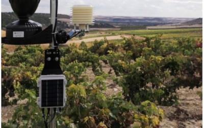 Apuesta por la  robótica para automatizar la poda en el viñedo