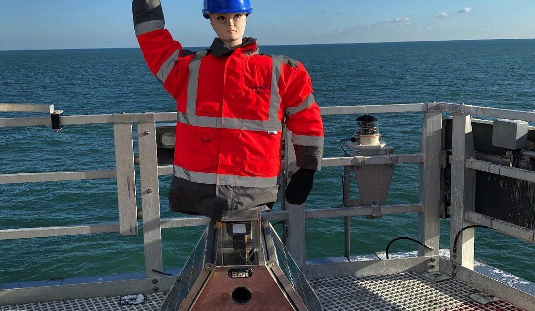 Estos gritos de espantapájaros robóticos protegen los parques eólicos marinos del guano de gaviota