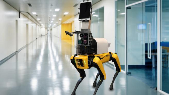 Modifican el famoso perro-robot Spot para que pueda revisar pacientes, evitando el contacto a los sanitarios