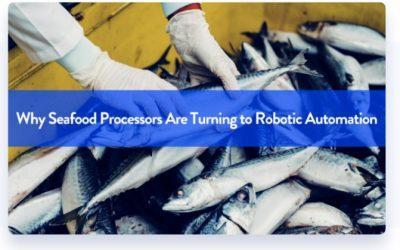 Por qué los procesadores de mariscos están recurriendo a la automatización robótica