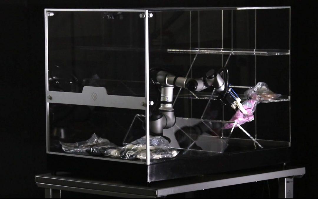 La Nueva Gran Estrategia de la Robótica: Fusionar la Mente Humana con la Artificial