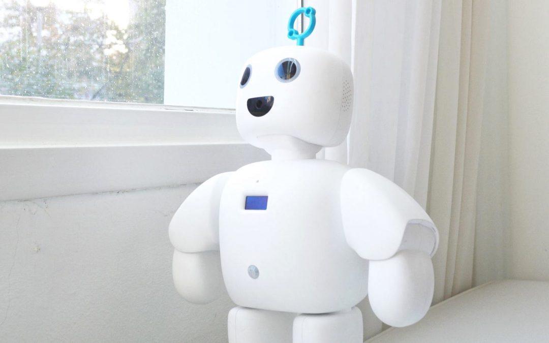 Conoce a piBo: el tierno robot acompañante que se ha robado el corazón de los asistentes al CES 2020
