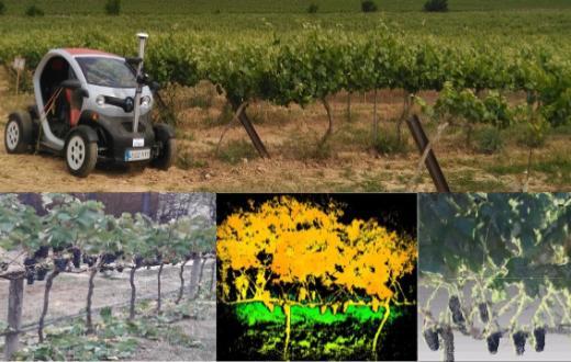 Terras Gauda se une a un proyecto de robótica para optimizar la gestión del viñedo y reducir la huella medioambiental