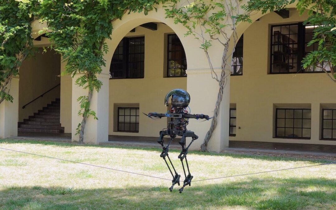 Este inquietante robot-drone puede caminar, volar y hasta mantener el equilibrio en la cuerda floja